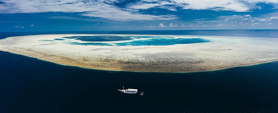 M.Y. OCEANIC